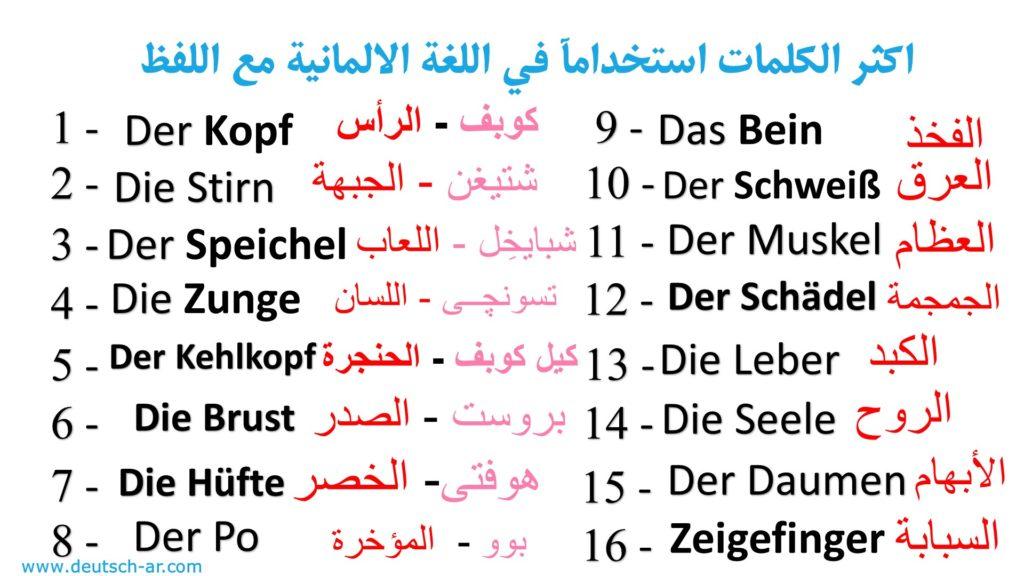 اهم 2000 كلمة في اللغة الالمانية مع اللفظ الكتابي – اعضاء الجسم